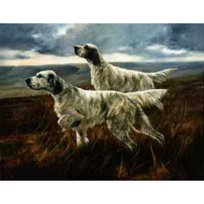 English Setters by John Trickett