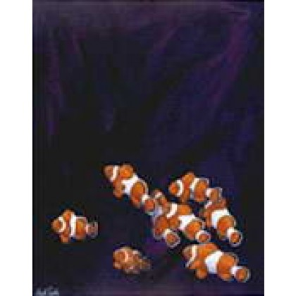 Anemone Clowns by Keith Siddle