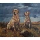 Yellow Labradors