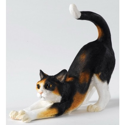 Cat Stretching - Calico