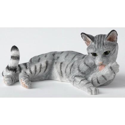 Cat Lying Licking Paw - Grey