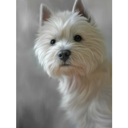 West Highland Terrier - 40th Celebration Image