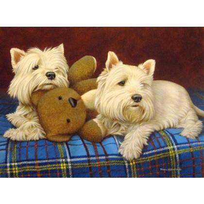 Teddy Boys by Nigel Hemming
