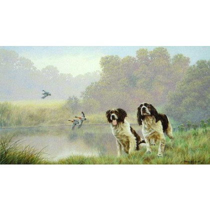 Water Sports, Springer Spaniels by Nigel Hemming