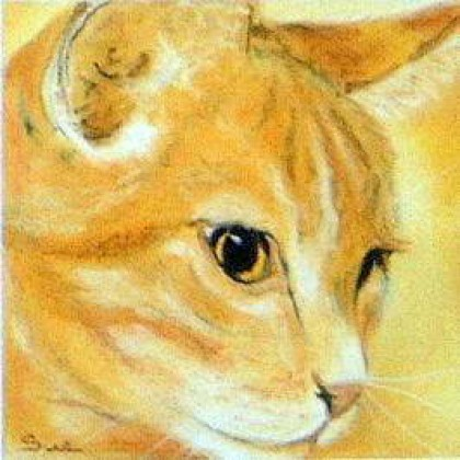 Ginger Tom by Sue Hemming