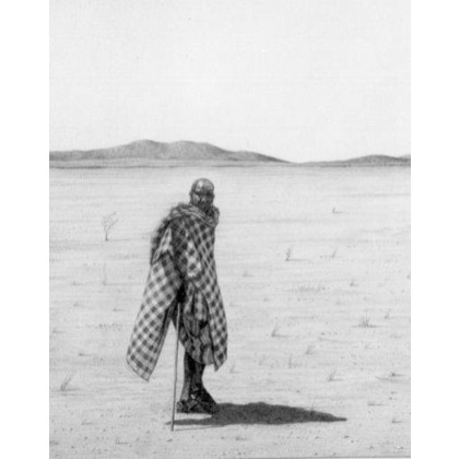 Serengeti Solitude by David Dancey-Wood