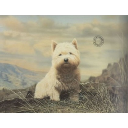 Westie by Northern Editions