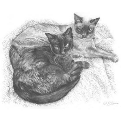 Saffy & Cassie