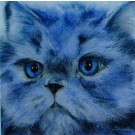 Blue Persian by Sue Hemming